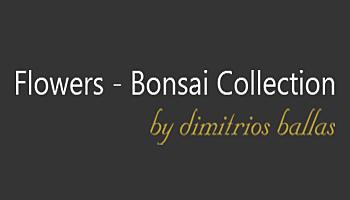 Bonsai - Καλλιθέα